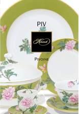PIVONE leaflet