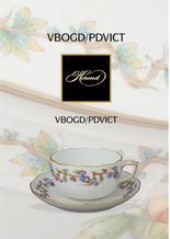 VBOGD/PDVICT leaflet
