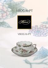 VBOG-X1-PT leaflet