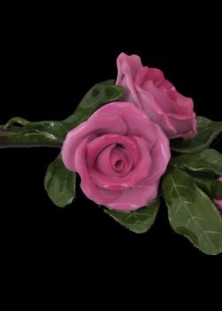 Rózsák 09111000 C-P