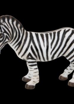 Zebra 15558000 MCD